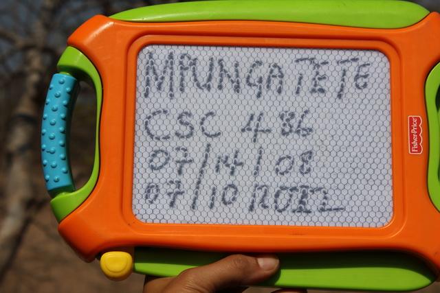 IMG_4917 Mpungatete_640w